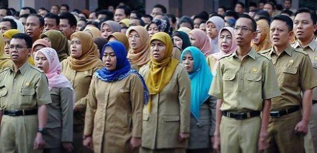 13.345 Tenaga Honorer K-II Berhak Ikuti Seleksi CPNS