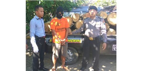 Angkut 24 Batang Kayu Tanpa Surat Resmi, Pria asal Karangturi Trenggalek Ditangkap Polisi