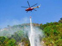Atasi Kebakaran di Gunung Arjuno-Welirang, BPBD Lakukan Water Bombing