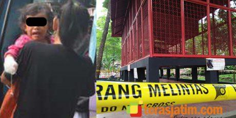 Balita Diserang Siamang di Taman Kebonrojo Blitar, Pemkot Lakukan Evaluasi Kandang