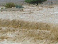 Banjir Bandang Terjang Sejumlah Wilayah di Tuban