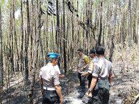 Baru Dilantik, Kapolres Trenggalek Langsung Turun ke Lokasi Kebakaran Hutan