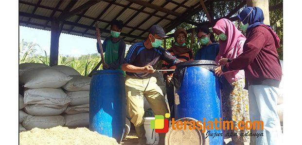 Berguru Mengolah Kardus Jadi Pakan Ternak, Mahasiswa UGM Serbu Desa Tulakan Pacitan