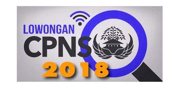 Besok, Portal Penerimaan CPNS Sudah Siap Diakses