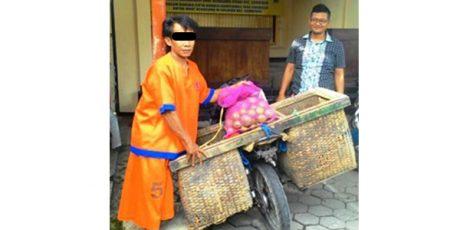 Butuh Uang Untuk Selamatan Mendiang Ibunya, Pria ini Nekat Curi Satu Kuintal Jeruk