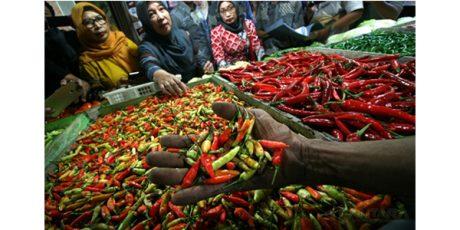 Cabai Impor dari India Beredar di Pasar Tradisional Mojokerto, Trenggalek dan Tulungagung