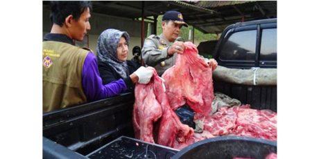 Daging Sapi Gelonggongan dari Ngawi, Disita Satgas Pangan Polres Kota Madiun