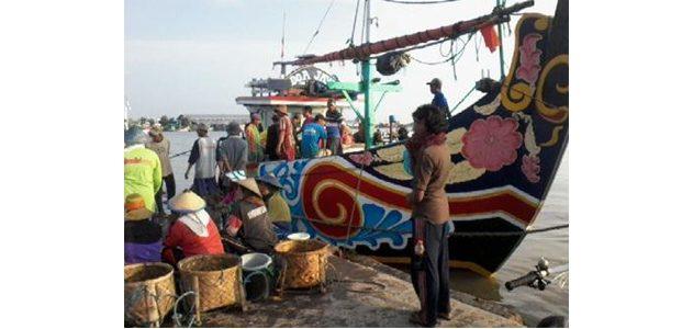 Dalam Seminggu, Pelabuhan Perikanan Nusantara Brondong Hasilkan Ikan Senilai 21 Miliar