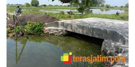 Viral Biaya Pembangunan Jembatan di Desa Wadak Kidul Gresik, Ini Tanggapan Kades
