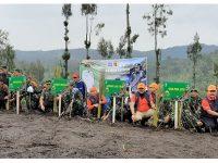 Gubernur Jatim Bersama Pangdam Brawijaya Tanam 50 Ribu Vertiver di Lereng Semeru