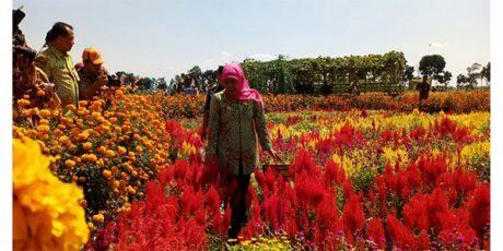 Gubernur Resmikan Dewi Cemara Kemang di Kediri