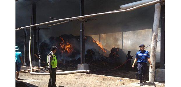 Gudang Penggilingan Tebu di Ngaglik Blitar, Kembali Terbakar