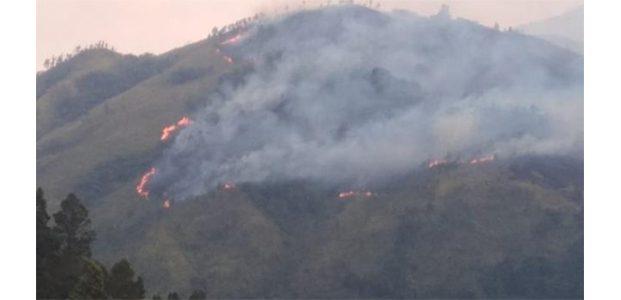 Gunung Arjuna Terbakar, 12 Pendaki Asal Mojokerto Dalam Pencarian
