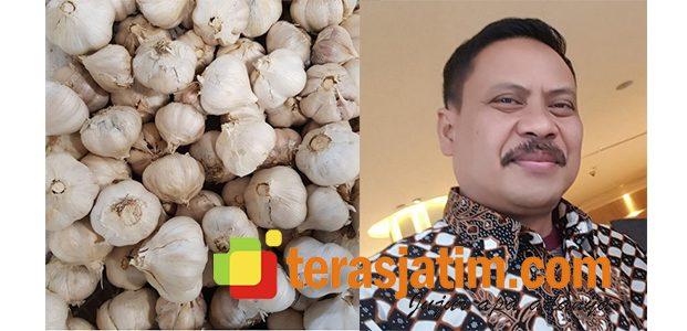 Harga Bawang Putih Melonjak, DPRD Sidoarjo Minta Disperindag Turun ke Pasar