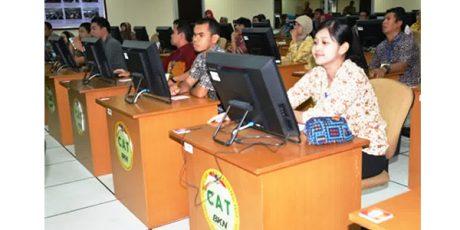 Hari Ini Pendaftaran CPNS Dibuka, BKN Pastikan Aplikasi Web Siap Digunakan