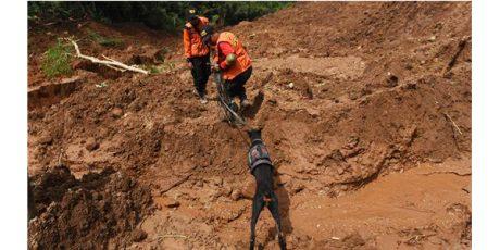 Hari ke 4 Pencarian Korban Tanah Longsor Ponorogo, Terhambat Cuaca Buruk