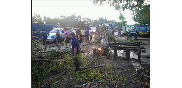 Hujan Deras dan Angin Kencang di Bojonegoro, Tumbangkan Pohon dan Tiang Listrik