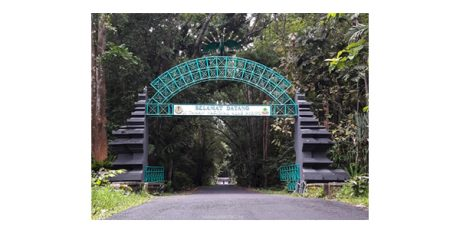Infrastruktur Sudah Beres, Kunjungan ke Alas Purwo Banyuwangi Melonjak