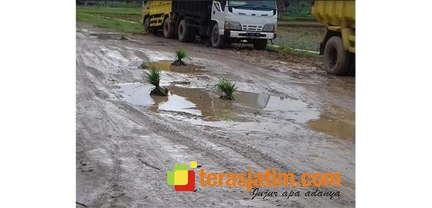 Jalan di Arjosari Pacitan Penuh Kubangan Lumpur, Pengguna Jalan: Wayahe Nanduri Lur