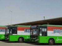 Viral Lowongan 25 Sopir Jemaah Haji di Arab Saudi, Kemenag Pastikan Itu Hoaks