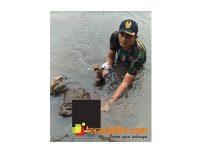Mayat Laki-Laki Ditemukan Mengapung di Sungai Gembong Pasuruan