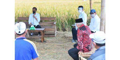 Usai Bertemu Keluarga Patriot KRI Nanggala-402, Presiden Dialog dengan Petani di Malang