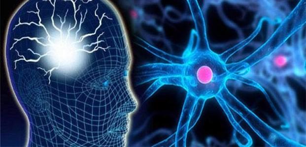 Cara Mudah Menyehatkan Otak Kita
