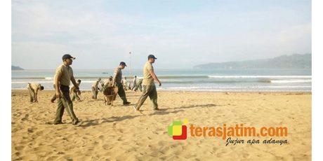 Hijaukan Kawasan Pantai Pancer Door, Kodim Pacitan Gelar Aksi