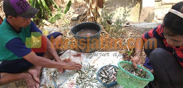Pasar Iwak Kali di Paju Ponorogo