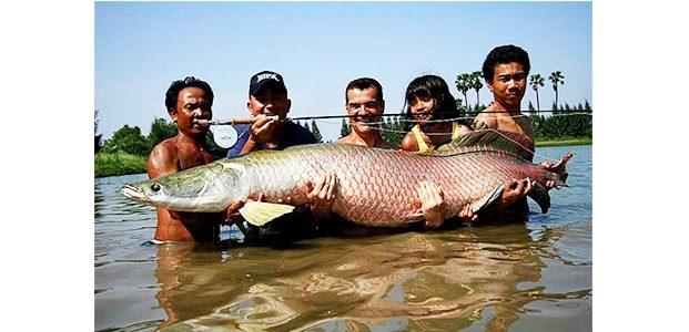 Pegiat Lingkungan Minta Pelaku Pelepas Ikan Predator ke Kali Brantas Diproses Hukum