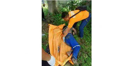 Petugas Kebersihan Jalan Tol, Ditemukan Tewas Tergeletak di Semak-Semak