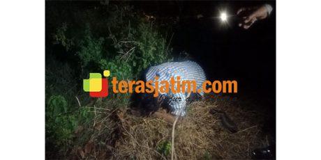 Mayat Pria dan Botol Miras Ditemukan di Samping Rel KA Tanggulangin Sidoarjo