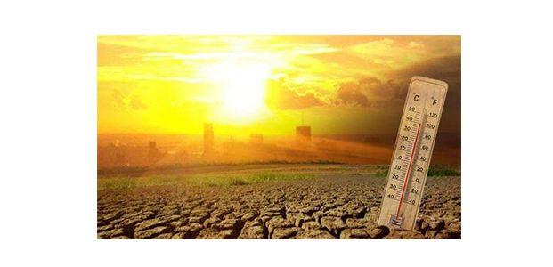 Suhu Udara Semakin Panas, Ini Penyakit Yang Bisa Terjadi