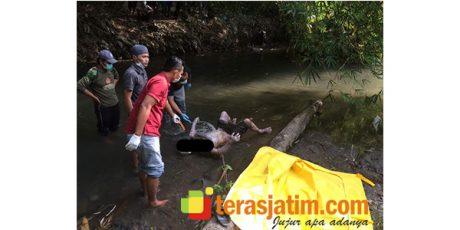 Warga Purworejo Blitar Temukan Mayat Pria Tanpa Identitas Mengambang di Sungai