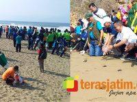 Serunya World Cleanup Day di Pantai Taman Pacitan, Ada Pelepasan Tukik