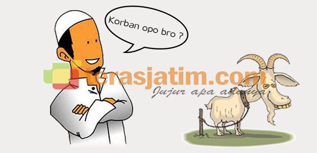 """Qurban """"opo"""" Bro ?"""