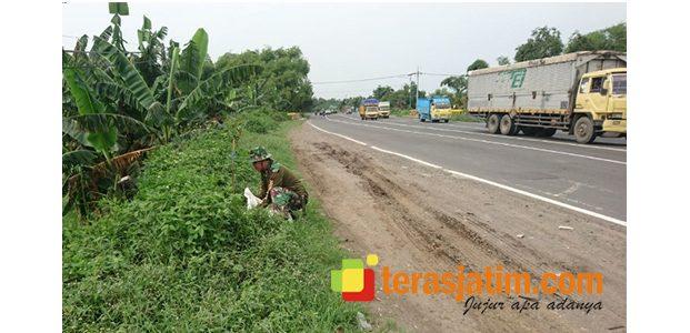 Kodim Mojokerto Lakukan Penyulaman Bibit Pohon di Ruas Jalan Nasional