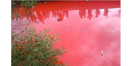 Air Sungai di Pesantren Kediri Mendadak Jadi Merah Darah